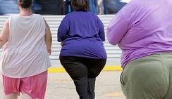 Диетолог: Россию ожидает эпидемия ожирения