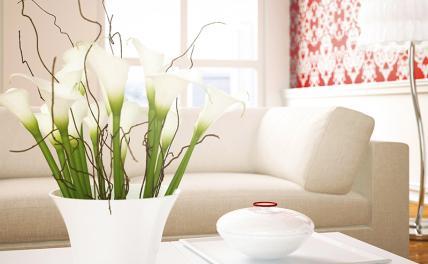 Как сделать атмосферу в квартире комфортной