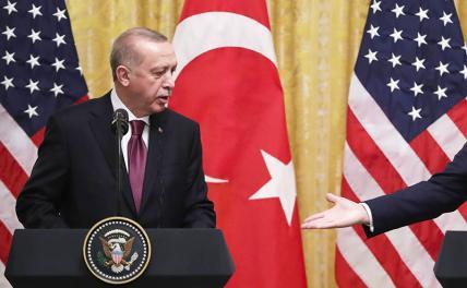 Турецкая невеста заявила, что «медовый месяц» в отношениях с русским Медведем закончился