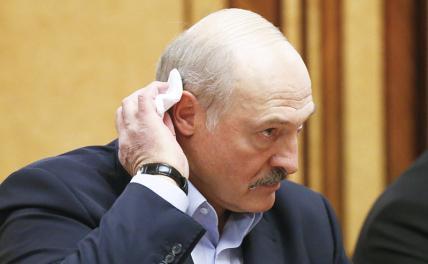 Покушение на Лукашенко: Бенефис злых клоунов