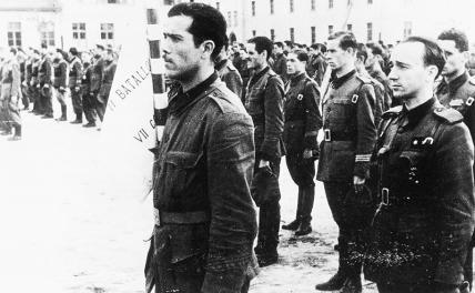 Репродукция снимка 'Испанские добровольцы 'Дивизии испанских волонтеров' (ДЕВ) во время утреннего молебна на полигоне Графенвер (Оберпфальц) в конце июля 1941 года' из фотокаталога выставки 'Война Германии против Советского Союза'.