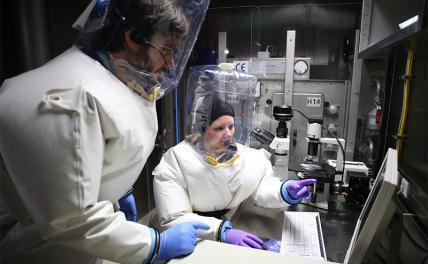 Биологическая война уже реальность?