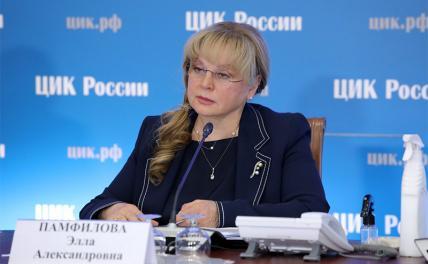 Памфилова назвала «подленьким» иск «Яблока» по поводу видеонаблюдения на выборах