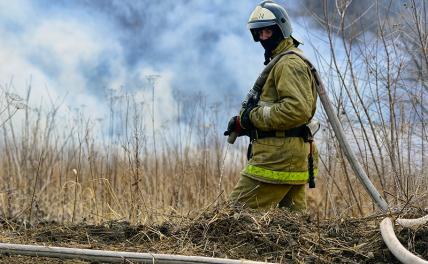 Москва: дело пахнет торфяниками