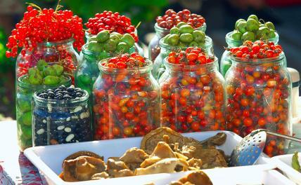 Стало известно, какие съедобные ягоды нельзя есть