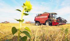 Фермер Мельниченко: «Хлеб подорожает вне зависимости от объемов урожая»