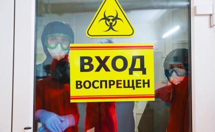 Вирусологи: «На смену гриппу может прийти более страшный враг»