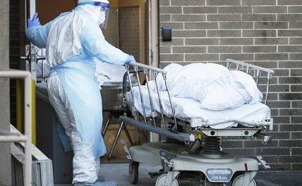 В России снова обновлен максимум смертей от коронавируса