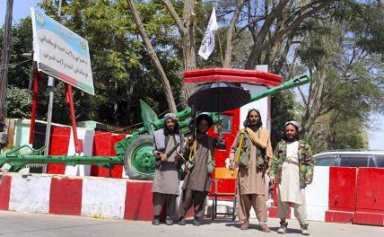 В Афганистане талибы запретили музыку