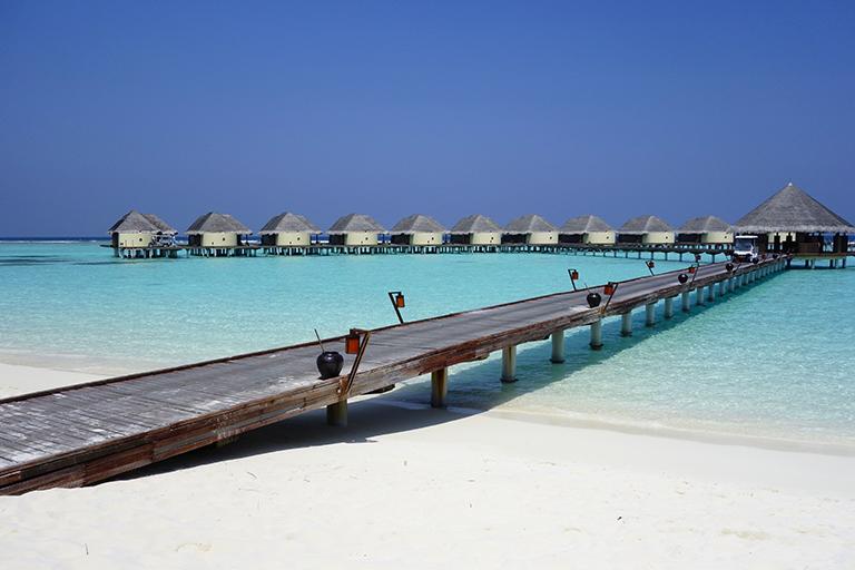 Russo touristo пандемия нипочем: Конкурентами Сочи стали Мальдивы и Сейшелы