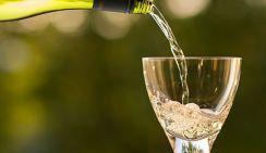 Ученые рассказали, как шампанское действует на мозг человека