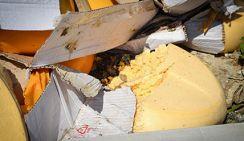 В России уничтожено 13 тонн контрафактного сыра