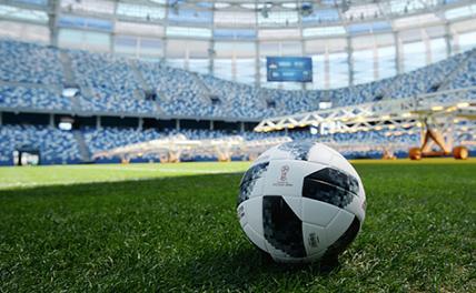 На ЧМ-2022 организуют зоны для «трезвых» болельщиков
