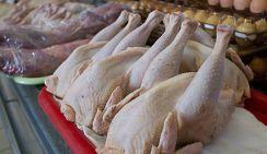Россияне рискуют остаться без дешевой курятины