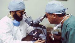 Онколог рассказал, с чего начинать обследование на рак мозга