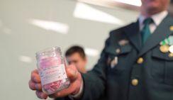 Названы самые свободные от наркотиков регионы России