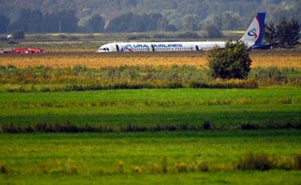 В Профсоюзе лётчиков рассказали, что спасло экипаж А-321