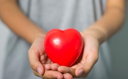 Немецкий кардиолог дал советы по оздоровлению сердца