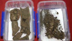 В Сиане обнаружена пшеница 2800-летней давности