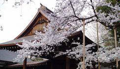 Китай призывает Японию порвать отношения с милитаризмом в связи с ритуальным подношением Синдзо Абэ храму Ясукуни
