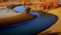 Китай восстанавливает экосистему вдоль реки Тарим