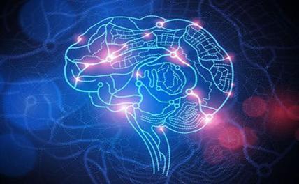 Китай выделит огромные финансовые средства в развитие науки о головном мозге