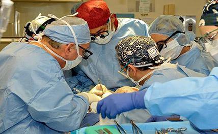Первая трансплантация человеческой головы на труп