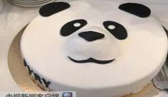 Подаренных Китаем панд тепло встретили в Финляндии