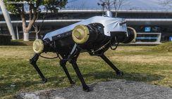 В Китае сконструировали четырехногого робота