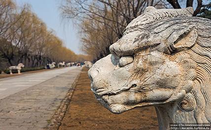 На Юго-Западе Китая обнаружен лакированный гроб династии Мин