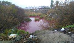 В Волгограде обнаружили розовое озеро