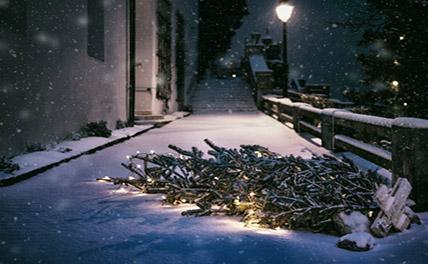 Ростовчане встретили Новый год массовым побоищем у главной елки