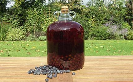 Житель Ставрополья украл у соседки и выпил 50 литров вина